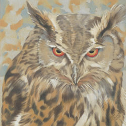 Colored pencil illustration of an owl