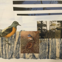 Cowling, Sarah - collage
